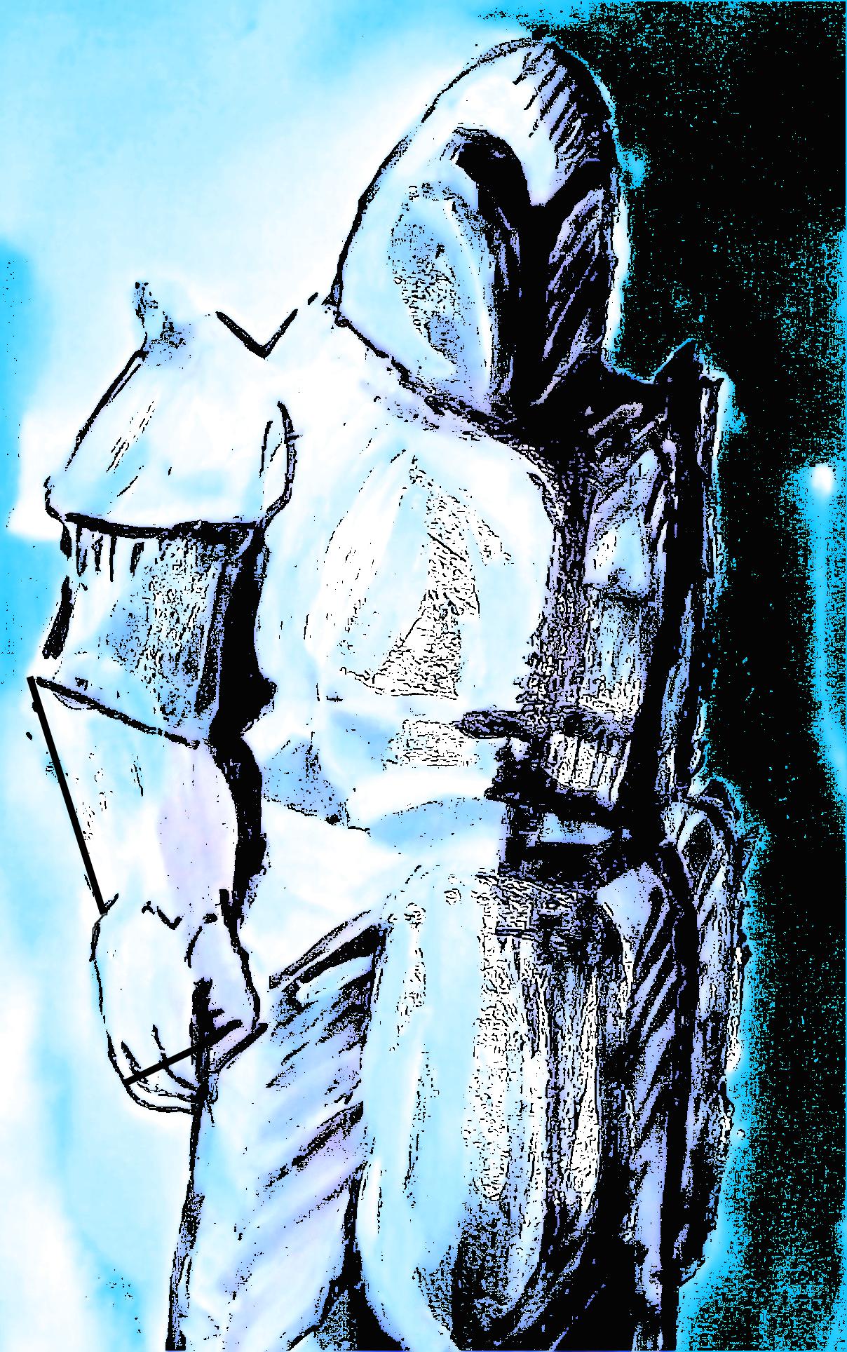 Knight of Niveren